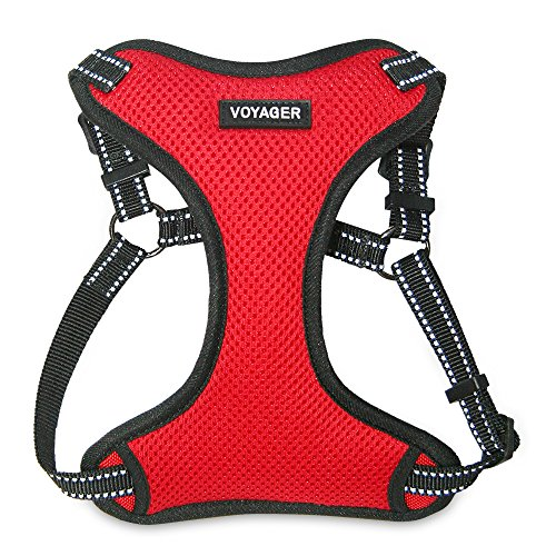 Best Pet Supplies Voyager Step-in Flex Dog Harness - All Weather Mesh, Step in Adjustable Harness for Small and Medium Dogs Red, Small