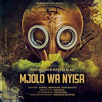 Mjolo Wa Nyisa (feat. BlaQ Yanos, MasterBlaQ & Dj Fonzi)