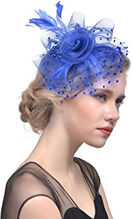 Wiwsi Lady Feather Fascinator Hair Clip Accessories Flower Cocktail Hat Church