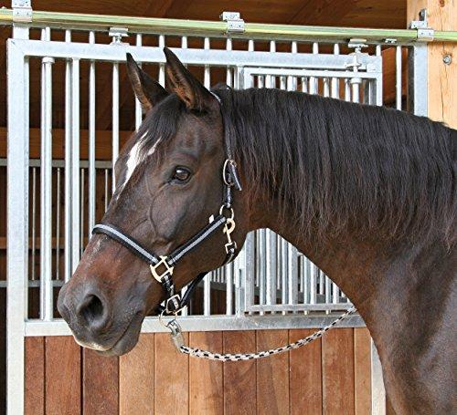 Kerbl-Cavezza Mustang, Colore: Nero/Argento, Misura 1