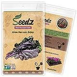 Organic Kale Seeds...image