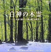 NHKサウンドスケープ 白神の木霊