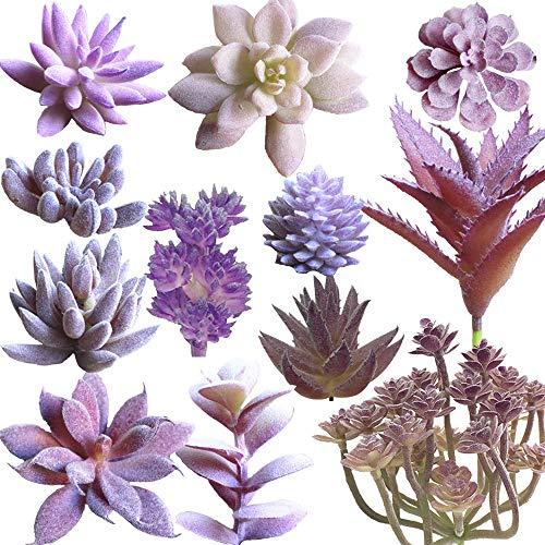 Aisamco 12 Stück Assorted Sukkulenten Pflanzen Unbefleckt Faux Sukkulenten Sortiment in Beflockte Lila Verschiedene Arten Unterschiedliche Größe für Blumenarrangement