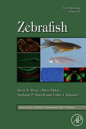 Fish Physiology: Zebrafish (English Edition)