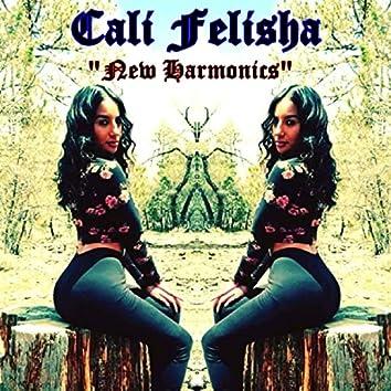 New Harmonics