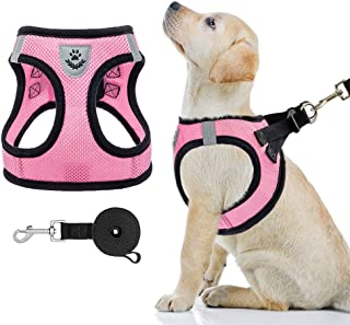 PAWCHIE Puppy Harness and Leash Set - Soft Mesh Dog Vest Harness, Reflective & Adjustable Harness for Small to Medium Dog...