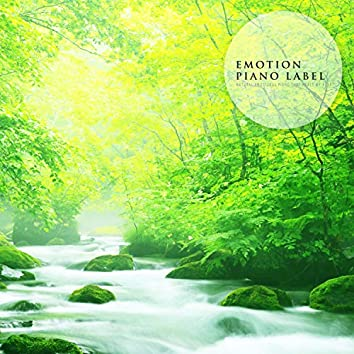 Natural Emotional Piano That Heals My Heart