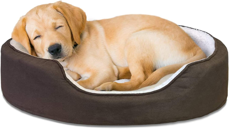 Furhaven Pet NAP Pet Bed Orthopedic Oval EggCrate Lounger Dog Bed or Cat Bed, Medium, Espresso