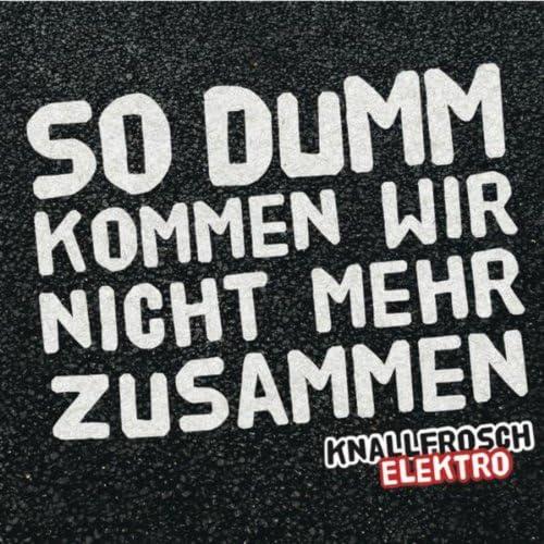 Knallfrosch Elektro