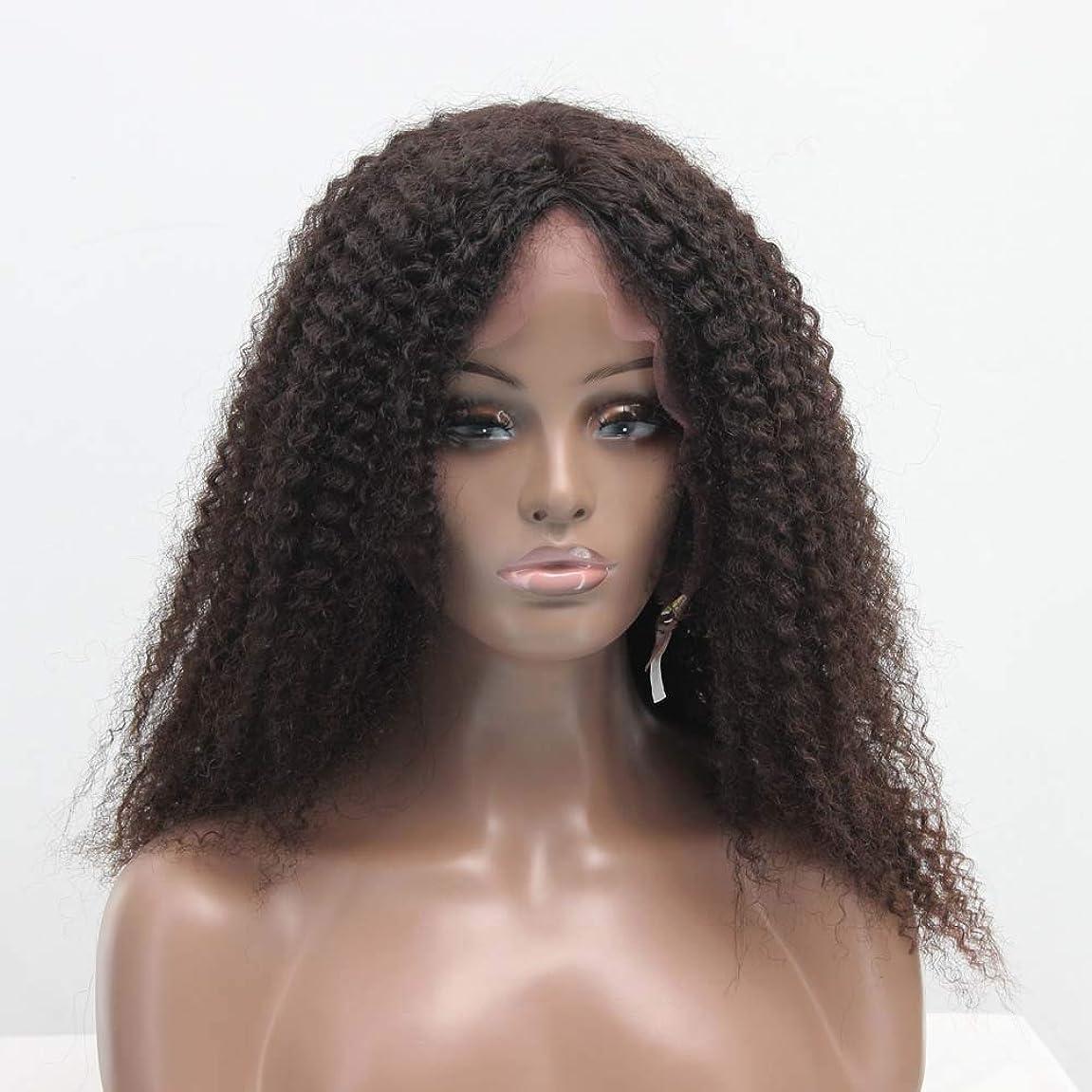 裁判官埋め込む豊かなZXF 真ん中と長い肩ふわふわフル手織り本物の髪の絹のフロントレースアフリカの小さな毛虫オールシーズン女性かつらセット 美しい (Size : 20