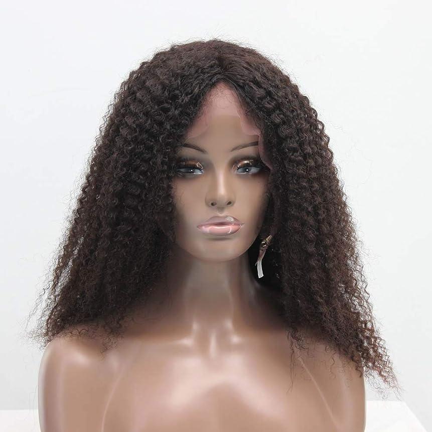 破壊的マザーランド手数料ZXF 真ん中と長い肩ふわふわフル手織り本物の髪の絹のフロントレースアフリカの小さな毛虫オールシーズン女性かつらセット 美しい (Size : 20