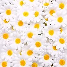 Daisy Flower Decorations