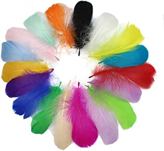 300PCS Colorful Feather, Simuer Goose Feathers for DIY Craft Wedding Home Party Decorations
