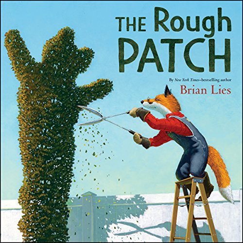 The Rough Patch  By  cover art