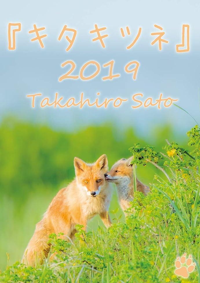 担当者誰か核『キタキツネ』カレンダー2019 (壁掛けサイズA3)