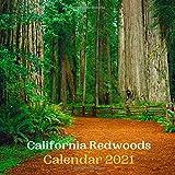 California Redwoods Calendar 2021