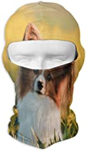 Balaclava Portrait of A Cute Elo Dog On A Meadow Full Face Masks UV Protection Ski Hat Cap Motorcycle Hood for Cycling Hiking Women Men