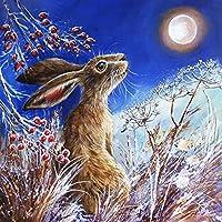 ダイヤモンド絵画動物クロスステッチムーンダイヤモンド刺繡ウサギモザイクキット手作りギフト壁の装飾A4 60x80cm