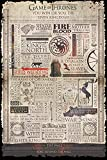 Game Of Thrones Infographic Poster Standard