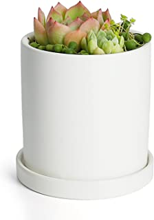 Greenaholics Plant Pots - 4.3 Inch Ceramic Matte Surface Cylinder Ceramic Planters for Succulents, Cactus, Flower Planting, with Drainage Hole and Tray, Matte White