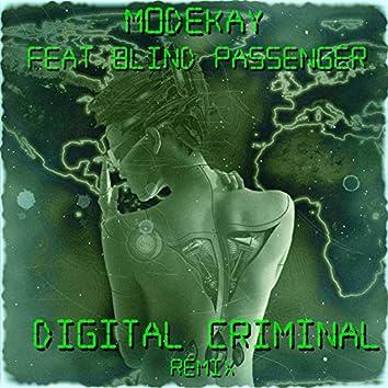 Digital Criminal (feat. Blind Passengers)
