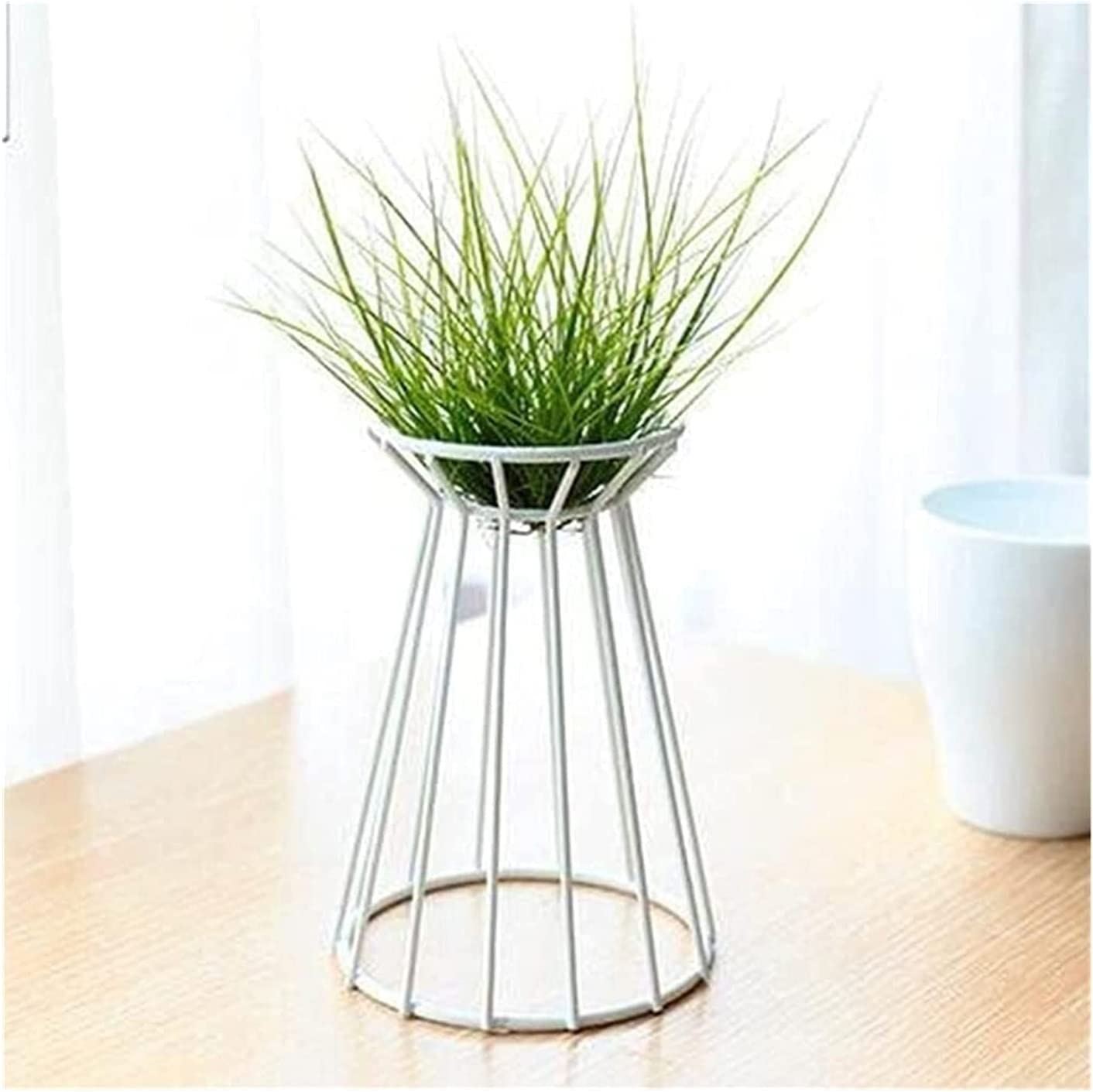 25% OFF Perportu-min Air Plant Stand Spring new work one after another Metal Desktop Indoor Chain Le Large