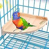 Madera Perca Juguete Parque Infantil Soporte Pet Bird Parrot Macaw africana...