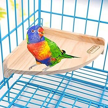 Perchoir en bois jouet jeu Support Pet Parrot oiseau perroquet gris d'Afrique perruches ondulées perruche Cage à hamster gerbille Souris Rat Accessoires Pieds Jouet d'exercice