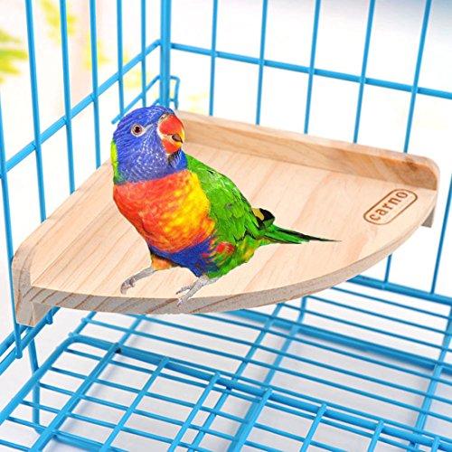 Holz Sitzstange Spielzeug Spielplatz Ständer Pet Bird Papagei Ara African Greys Wellensittiche Sittiche Sittiche Hamster Gerbil Rat Maus Käfig Zubehör steht Übung Spielzeug