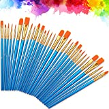 Nylon Artista Pennello, 30 Pz Pennelli Dipingere Pennelli Pittura Nylon Set per Principianti, Bambini, Artisti, Amanti della Pittura Olio e Modello Viso Painting Arte