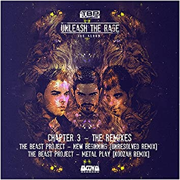Unleash the Rage (Chapter 3 - The Remixes)