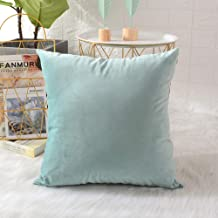 MERNETTE Velvet Soft Decorative Square Throw Pillow Cover Cushion Covers Pillow case, Farmhouse Home Decor Decorations for Sofa Couch Bed Chair 24x24 Inch/60x60 cm (Light Green)