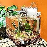 Betta Fish Tank Kit de Tanque de Acuario Mini pecera de Escritorio Kit de Cuencos con Bomba de Agua y Caja de Filtro Autocirculación Tanque ecológico Peces Enfermos Sala de Aislamiento de Peces