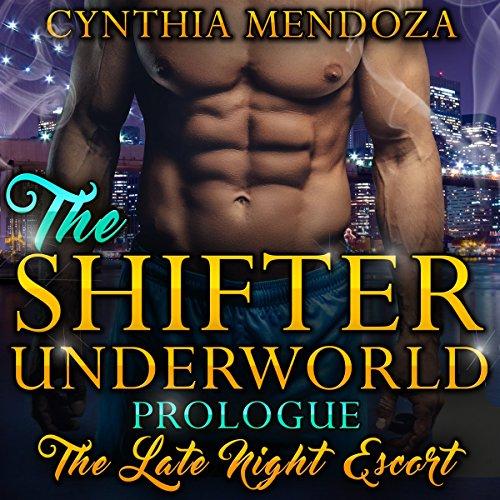 The Late Night Escort audiobook cover art