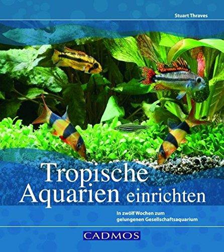 Tropische Aquarien einrichten: In zwölf Wochen zum gelungenen Gesellschaftsaquarium (Cadmos Aquaristik)