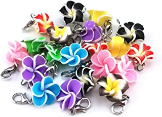 yueton 20pcs Assorted Color Frangipani Flower Dangle Charms Pendant with Lobster Clasp Jewelry Making Accessory Fit Floating Locket Charms Necklaces