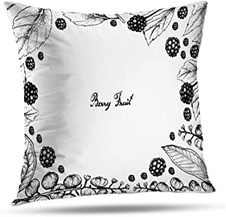 Alricc Americana Decorative Throw Pillows Cover, Fruits Frame Sketch American Americana and White Cushion Cover for Bedroom Sofa Living Room 18X18 Inches