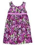 Gymboree Baby Girls Sleveless Floral Print Dress with Sash, Violet Blooms, 3T