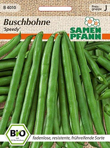 Samen Pfann B4010 Buschbohne Speedy (Bio-Buschbohnensamen)
