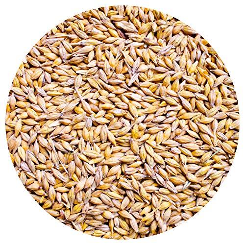 Petigi Gerste 15 kg für Hühnerfutter Geflügelfutter Futtergerste Vogelfutter Nager Geschält Körner Getreide Barley Sack Futter Entspelzt Gereinigt Samen
