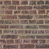 Papel pintado tnt ladrillo Papel imitacion piedra Papel imitacion ladrillo beige marrón rojo 371611 37161-1 A.S. Création Trendwall | beige/marrón/rojo | Rollo (10,05 x 0,53 m) = 5,33 m²