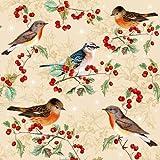 20 servilletas con diseño de pájaros sobre ramas como decoración de mesa para amantes de los animales y del bosque, 33 x 33 cm