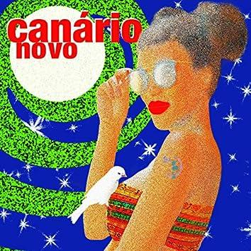 Canário Novo