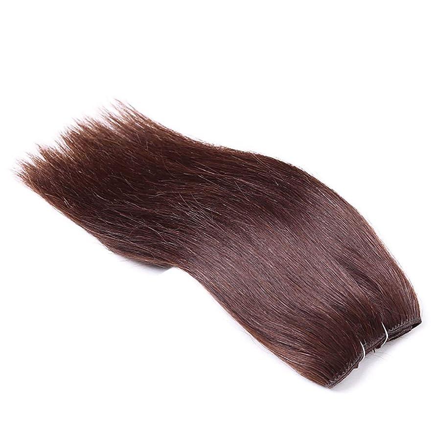 私達一月受信機Koloeplf 女性 ロングストレート ヘアカーテン かつら パーティー用 ハイエンド 本物の髪 ウィッグ (サイズ : 14inch)