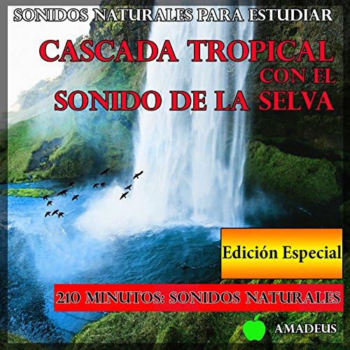 Sonidos Naturales para Estudiar: Cascada Tropical Con el Sonido de la...