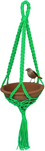 JAINSONS PET PRODUCTS Clay and Plastic Bird Feeder Earthenware Bowl 500ml 21x21x80cm (Green)