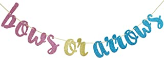 Bows Or Arrows Banner, Baby Shower, Gender Reveal Party, Glitter Party Decor (Blue, Gold &Pink))