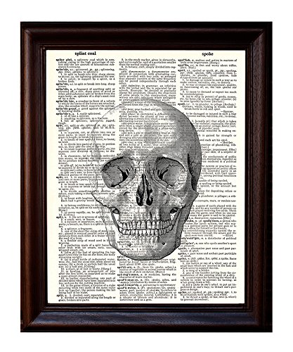 Fresh Prints of CT Anatomical Human Skull Diagram - Printed on Upcycled Vintage Dictionary Paper - 8x10.5 Anatomy Art Poster/Print