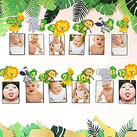 JeVenis 12 Monate Dschungel Gold monatliches Foto-Banner, Baby-Monats Rekord-Banner, wildes Januar-Foto-Banner, erster Geburtstags-Banner monatliches Foto-Banner, Zoo-Dschungel-Banner