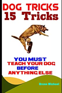 Dog Tricks: 15 Tricks You Must Teach Your Dog before Anything Else